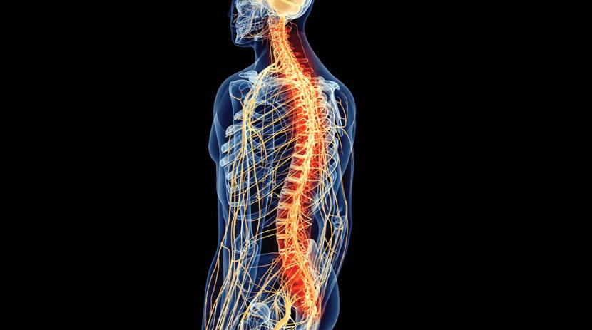 spinal cord injury - Valdivia Law Office